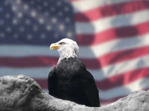 eagle n flag