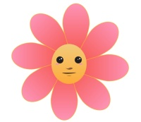 Pink flower with yellow face